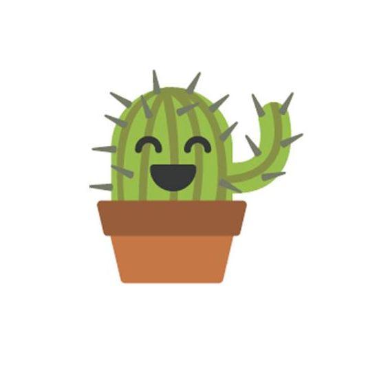 cactus yobitos